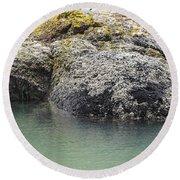 Coast Ecosystems Round Beach Towel