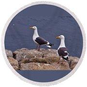 Coastal Seagulls Round Beach Towel