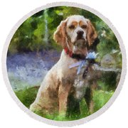 Cocker Spaniel Outside 04 Round Beach Towel