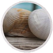 Cockle And Sea Urchin Round Beach Towel