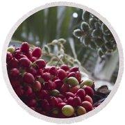 Cocos Nucifera - Niu Mikihilina - Palma - Niu - Arecaceae -  Palmae Round Beach Towel