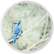 Cold Day For A Blue Jay Round Beach Towel