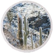 Cold Saguaros Round Beach Towel