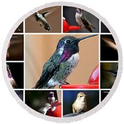 Collage Of Hummers Round Beach Towel
