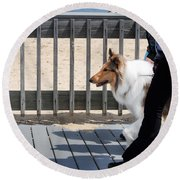 Collie Walk Round Beach Towel