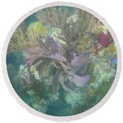 Color Corals Round Beach Towel by Adam Jewell