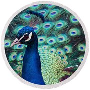 Color Me Peacock Round Beach Towel