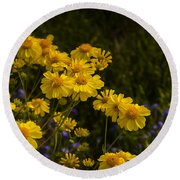 Color Me Yellow  Round Beach Towel
