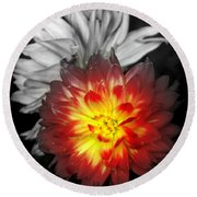 Color Of Life Round Beach Towel