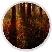 Color On The Forest Floor Round Beach Towel