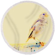 Color Sparrow Round Beach Towel