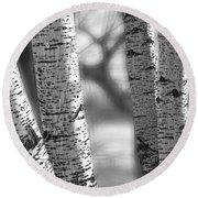 Colorado White Birch Trees In Black And White Round Beach Towel