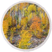 Colorful Autumn Forest In The Canyon Of Cottonwood Pass Round Beach Towel