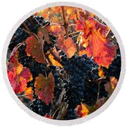 Colorful Autumn Grapes Round Beach Towel