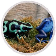 Colorful But Deadly Poison Dart Frogs Round Beach Towel
