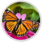 Orange Viceroy Butterfly Round Beach Towel
