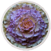 Colorful Cabbage Round Beach Towel
