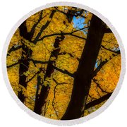 Colorful Canopy Round Beach Towel