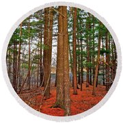 Colorful Carolina Forest Round Beach Towel