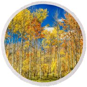 Colorful Colorado Autumn Aspen Trees Round Beach Towel