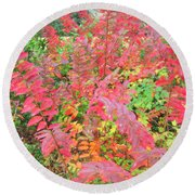 Colorful Fall Leaves Autumn Crepe Myrtle Round Beach Towel