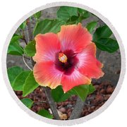 Colorful Flower Round Beach Towel