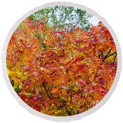 Colorful Leaves In Autumn Round Beach Towel
