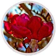 Colorful Magnolia Blossom Round Beach Towel