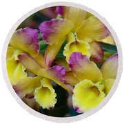 Colorful Orchids Round Beach Towel
