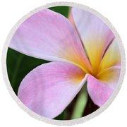 Colorful Pink Plumeria Flower Round Beach Towel
