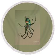 Colorful Spider In The Swamp Round Beach Towel