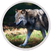 Colorful Wolf Round Beach Towel