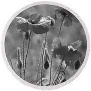Colour Blind Poppies 1 Round Beach Towel
