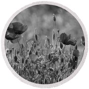Colour Blind Poppies 2 Round Beach Towel