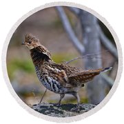 Coltsfoot Ruffed Grouse Round Beach Towel