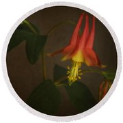 Columbine Round Beach Towel