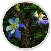 Columbine Flowers And Pine Tree Round Beach Towel