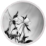 Columbines In Black And White Round Beach Towel