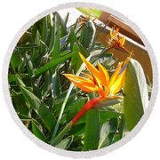 Combination Of Yellow-orange And Red Flower   Round Beach Towel
