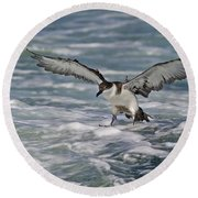 Coming In For Landing... Round Beach Towel