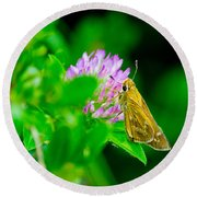Common Banded Skipper Round Beach Towel