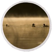 Common Loon Pictures 148 Round Beach Towel