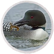 Common Loon With Food Round Beach Towel