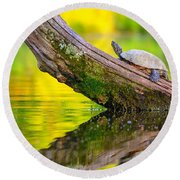 Common Map Turtle Round Beach Towel