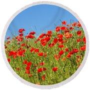 Common Poppy Flowers  Round Beach Towel