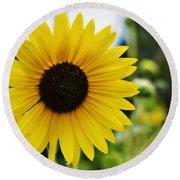 Common Sunflower Round Beach Towel