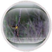 Common Yellowthroat - Bird Round Beach Towel