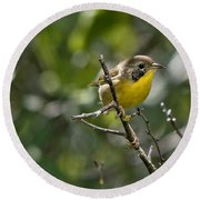 Common Yellowthroat Warbler Round Beach Towel