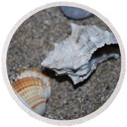 Conch 2 Round Beach Towel