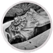 Conch Shell Two Round Beach Towel